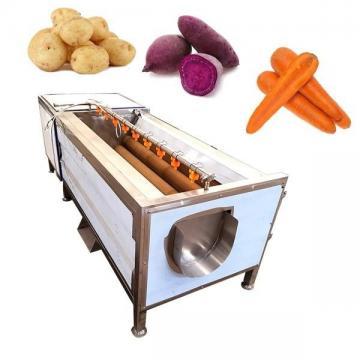 Machine à laver à brosse à légumes